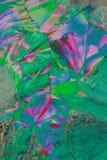 Cristales coloridos macros Foto de archivo libre de regalías