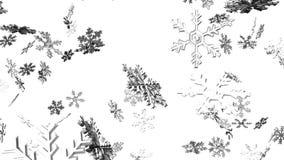 Cristales de la nieve en el fondo blanco ilustración del vector