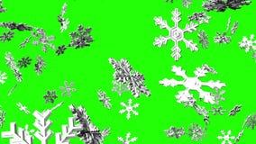 Cristales de la nieve en llave verde de la croma ilustración del vector
