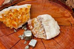 Cristales de la pirita, del citrine y de Honey Calcite - en el tocón de árbol de madera Imágenes de archivo libres de regalías
