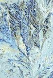 Cristales del ácido cítrico fotos de archivo libres de regalías