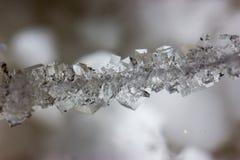 Cristales hermosos de la sal en una secuencia Imagen de archivo libre de regalías