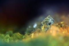 Cristalli brillanti del sale, cristalli di ghiaccio, Fotografie Stock Libere da Diritti