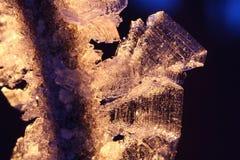 Cristalli del Hoarfrost su una filiale del salice fotografia stock libera da diritti