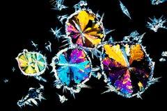 Cristalli dell'acido citrico all'indicatore luminoso polarizzato fotografie stock