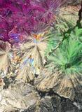 Cristalli dell'acido citrico a macroistruzione fotografia stock