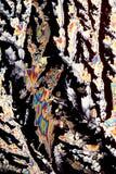 Cristalli di acido citrico fotografie stock