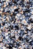 Cristalli di acido citrico fotografie stock libere da diritti