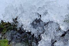 Cristalli di ghiaccio astratti sulle piante congelate Fotografie Stock Libere da Diritti