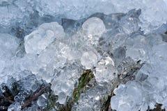 Cristalli di ghiaccio astratti sulle piante congelate Fotografia Stock