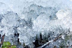 Cristalli di ghiaccio astratti sulle piante congelate Immagine Stock