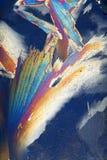 Cristalli di ghiaccio colorati Fotografia Stock