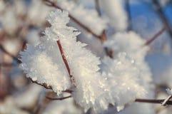 Cristalli di ghiaccio durante il tramonto Immagine Stock Libera da Diritti