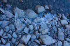 Cristalli di ghiaccio sulle pietre sulla banca del lago Fotografia Stock