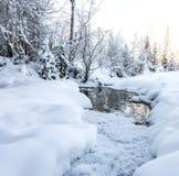 Cristalli di inverno Fotografia Stock