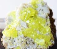 Cristalli gialli di zolfo indigeno sulla matrice Immagini Stock Libere da Diritti