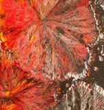 Cristalli variopinti dell'acido citrico immagini stock libere da diritti