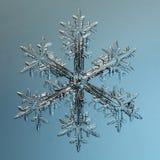 Cristallo del fiocco di neve naturale Fotografia Stock