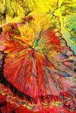 Cristaux colorés d'acide citrique images libres de droits
