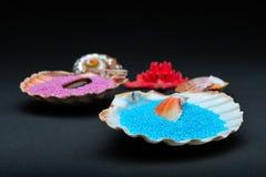 Cristaux colorés de sel de bain dans les seashells photographie stock libre de droits