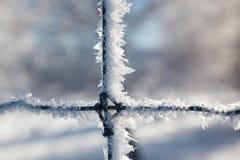 Cristaux de glace sur une barrière Photos libres de droits