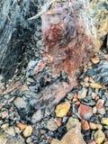 Cristaux et obsidien colorés au sommet de cratère de Panum photos libres de droits