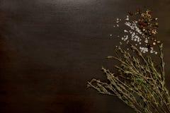 Cristaux, grains de poivre et thym de sel brut sur le bois de construction foncé photo libre de droits