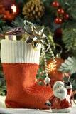 cristmas存在库存 图库摄影