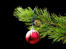cristmas红色玩具结构树 免版税库存照片