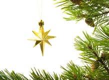 cristmas звездочки Стоковое фото RF