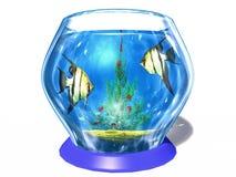 Cristmas in aquarium royalty-vrije illustratie