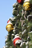 Cristmas balls and new year's fir tree Royalty Free Stock Photo