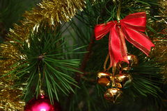 Cristmas bells on the pine Royalty Free Stock Photos