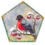 Cristmas bullfinch illustration Royalty Free Stock Photography