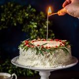 Cristmas Coconut Cake Royalty Free Stock Image