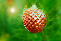 Cristmas decoration Royalty Free Stock Image