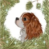 Cristmas dog fir tree 2018 new year spaniel. Vector realistic drawing - cute breed of dogs Cavalier King Charles Spaniel, a symbol of the year 2018 of the dog stock illustration