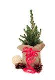 Cristmas drzewo dekorujący z rożkiem, łękiem i piłką sosny, Zdjęcie Stock