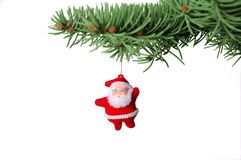 Cristmas santa. Cristmas toy santa handing on fir branch Stock Image