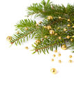 Cristmas seasonal background with spruce and beads. Cristmas seasonal background with spruce and golden beads isolated Stock Image