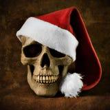 Cristmas skull Royalty Free Stock Image