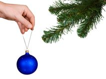 Cristmas tree, hand and ball. Isolated on white background Stock Photos