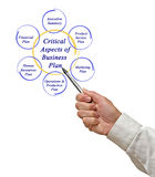 Critical Aspects of Business Plan. Presenting diagram of Critical Aspects of Business Plan Royalty Free Stock Photos