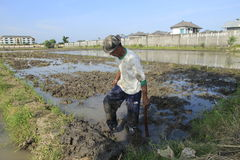Critical land. Farmer get activity on critical land between buildings and settlements at Sukoharjo, Central Java, Indonesia Stock Images