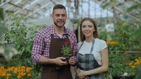 Critique el tiro de los jardineros sonrientes jovenes de los pares del blogger en el delantal que sostiene la flor que hablan y d almacen de video
