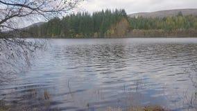 Critique para arriba y enfoque de una opinión sobre nivel del agua en una orilla del lago Achray, Escocia almacen de metraje de vídeo