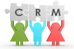 CRM - Puzzle del customer relationship management in una linea Immagine Stock