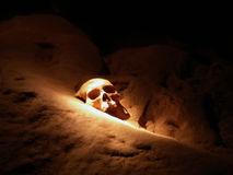 Crâne 17 en caverne d'atmosphère Images stock