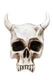 Crâne avec des klaxons Photo stock
