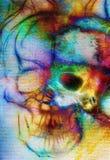 Crâne et effet de fractale Fond d'espace chromatique, collage d'ordinateur Éléments de cette image meublés par la NASA Photos libres de droits